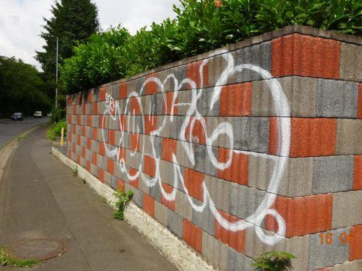 Graffitientfernung und Graffitischuzt  Mauer in Bonn