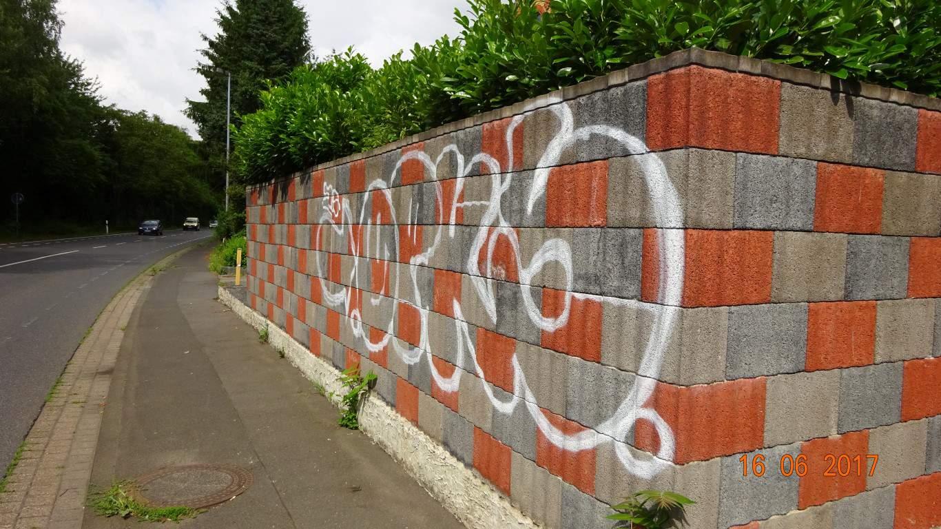 Graffitientfernung Graffitischuzt Mauer Bonn