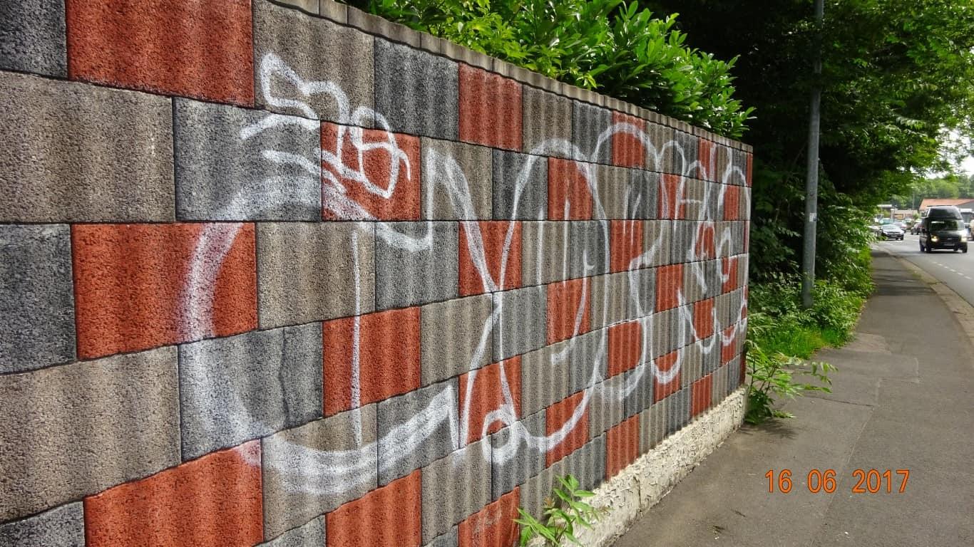 Graffitientfernung Graffitischuzt Mauer Bonn 3