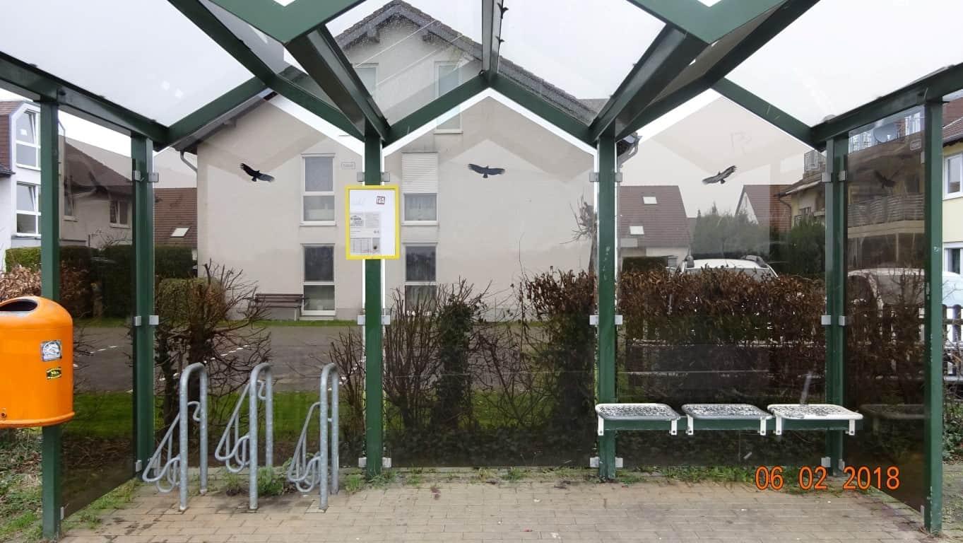Graffitientfernung Wartung NRW 20