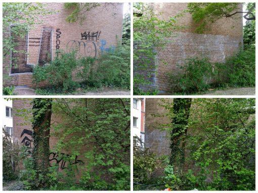 Graffitientfernung und Graffitischutz  Klinkerfassade und Garagentore in Köln