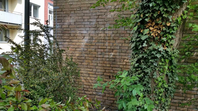 Graffitireinigung und Graffitischuzt Klinker und Garagentore 4