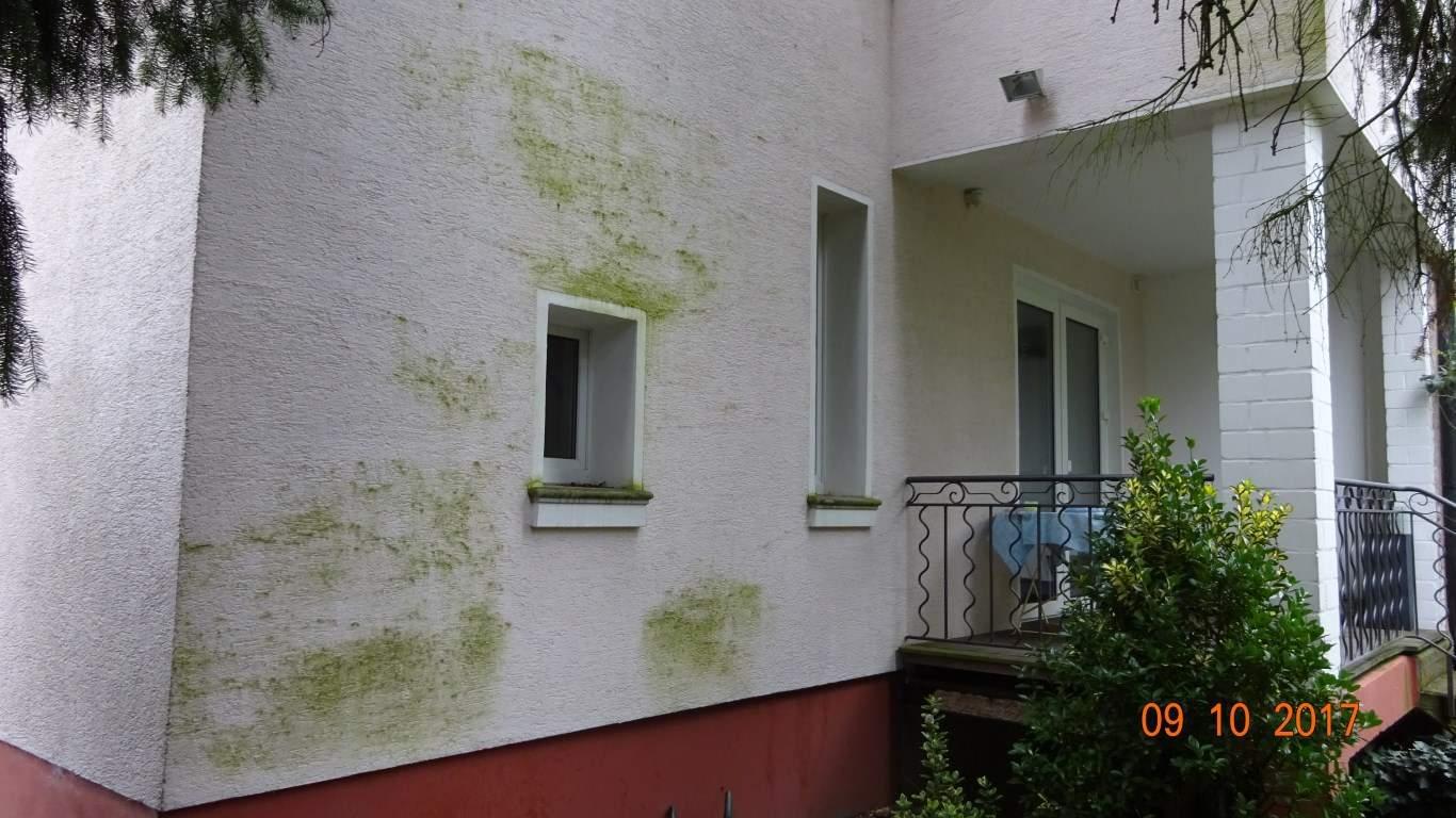 Fassadenreinigung mit Teleskoplanze und Langzeitschutz Imprägnierung in Köln (3)