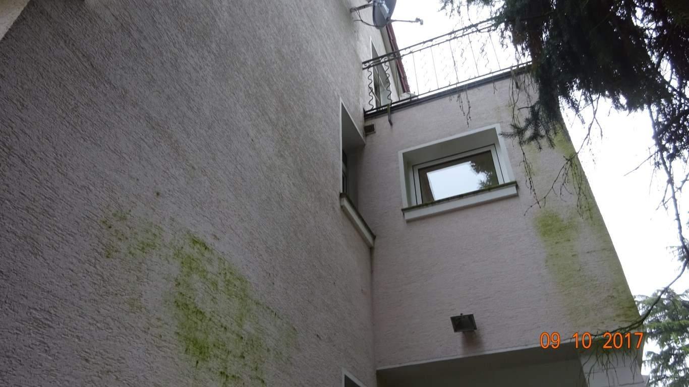 Fassadenreinigung mit Teleskoplanze und Langzeitschutz Imprägnierung in Köln (4)