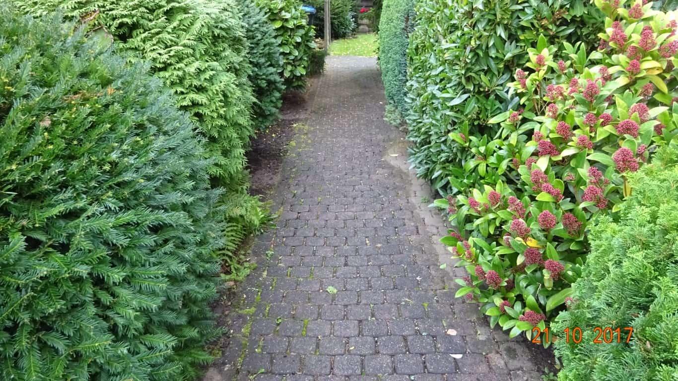 Pflasterreinigung und Langzeitschutz in Bergisch Gladbach (15)